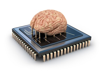 brain on a chip.jpg