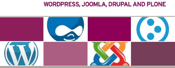 WordPress Joomla Drupal Plone.jpg